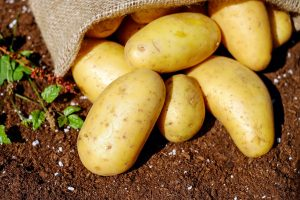 This image has an empty alt attribute; its file name is potatoes-1585075_1920-300x200.jpg