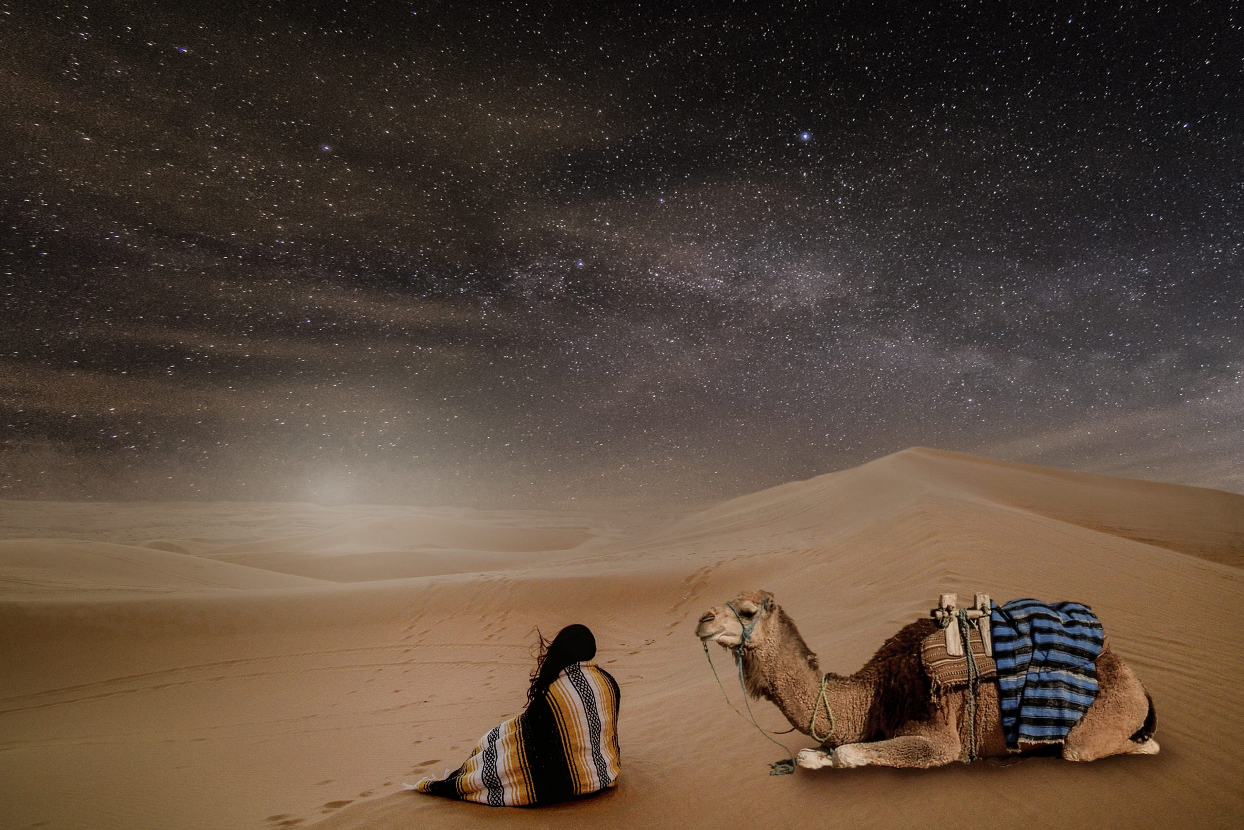 star in the desert, camel, chameau