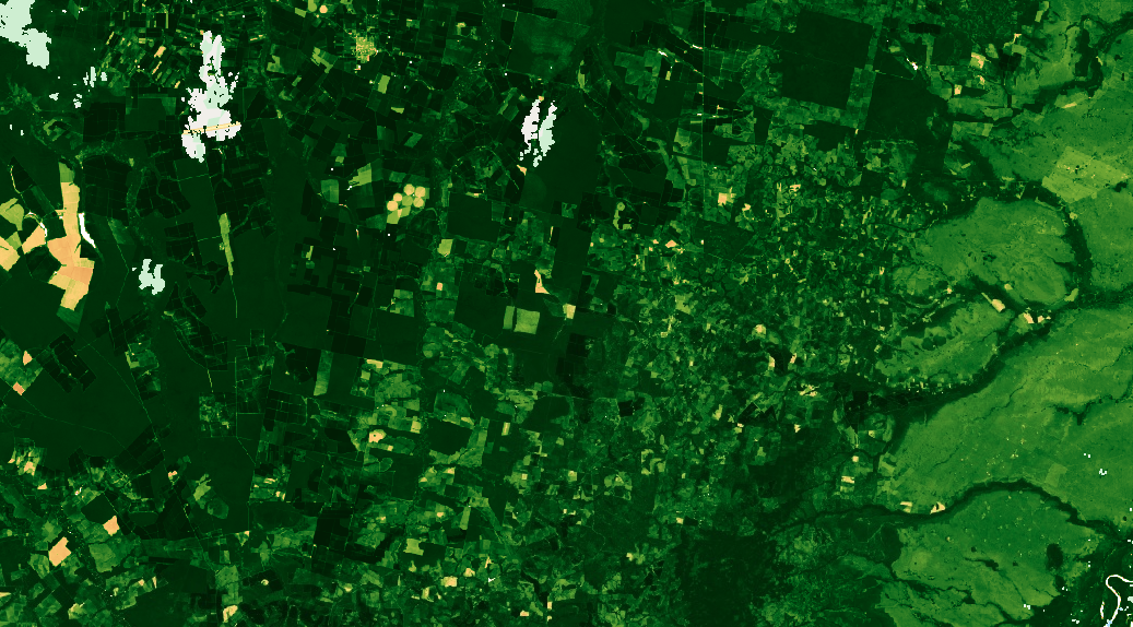 nature, jungle, foret, satellite picture, photo satellite
